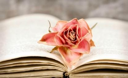 rose and book