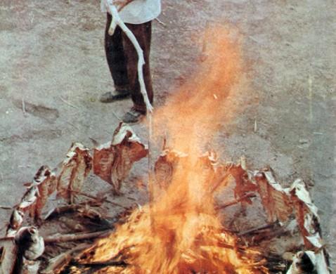 SHINJANG SEN'ITI 1983-1